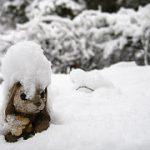 snowed_under